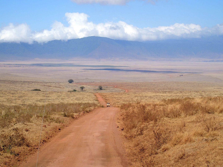 Descente dans le parc Ngorongoro Tanzanie