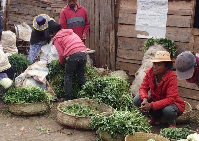 Etal herbes aromates marché Madagascar