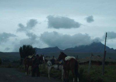 Gauchos sur route volcan Cotopaxi Equateur