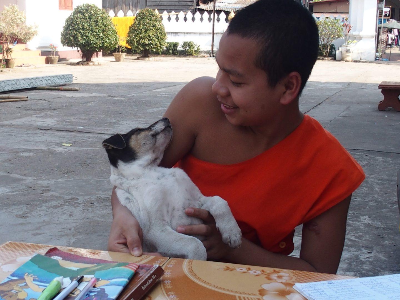Novice et son petit chien Luang Prabang Laos