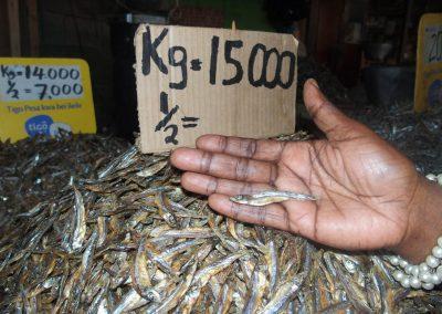 Petits poissons marché Dar es Salaam Tanzanie