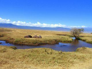 Le parc du cratère de Ngorongoro en Tanzanie