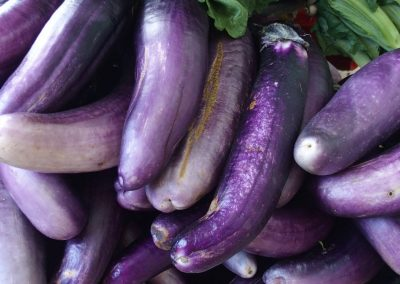 Sorte d'aubergines marché Timphu Bhoutan