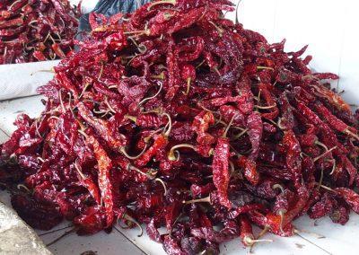 Vente de piments marché Timphu Bhoutan