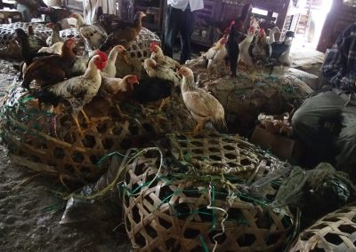 Vente poulets marché Dar es Salaam Tanzanie