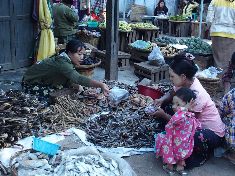 Etal poissons séchés marché Bagan Birmanie