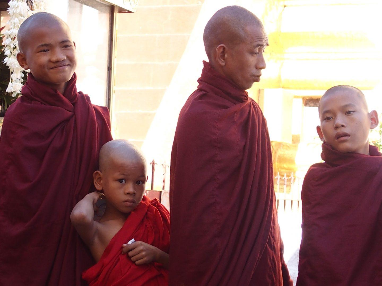 Moines et moinillons pagode Shwezigon Bagan Birmanie