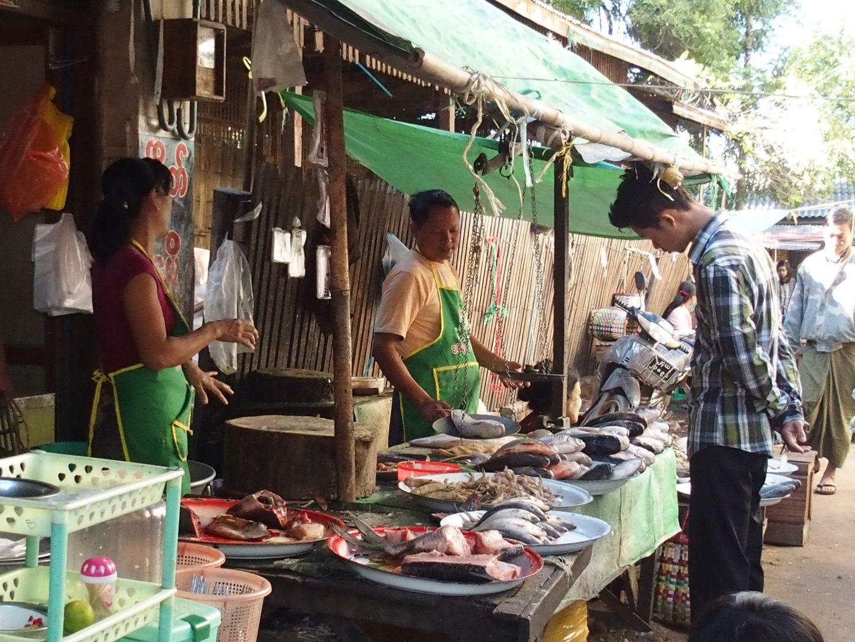 Vente poissons marché Bagan Birmanie