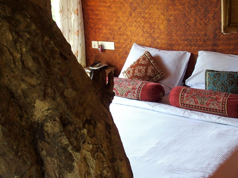 Chambre dans cabane sur arbre Kerala Inde
