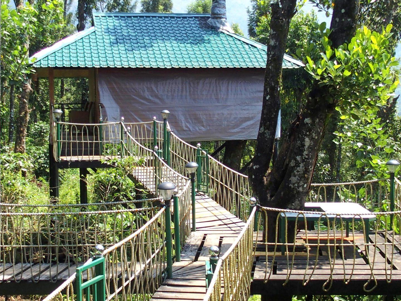 Chambre dans les arbres Kerala Inde