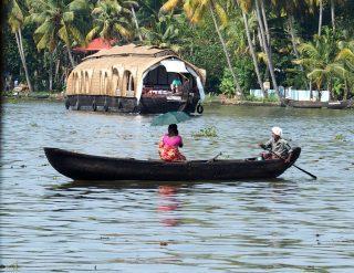 Plantations de thé et backwaters dans le Kérala en Inde