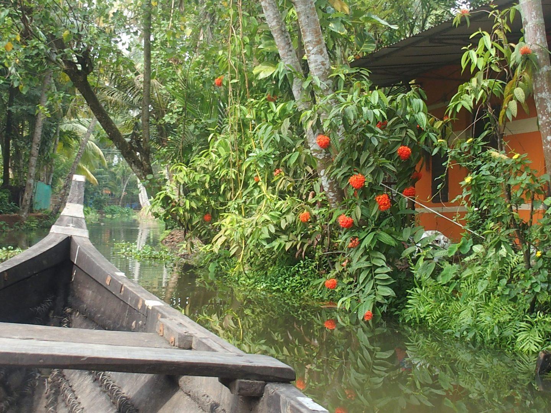 Jolie balade sur canaux Allepezha Kerala Inde