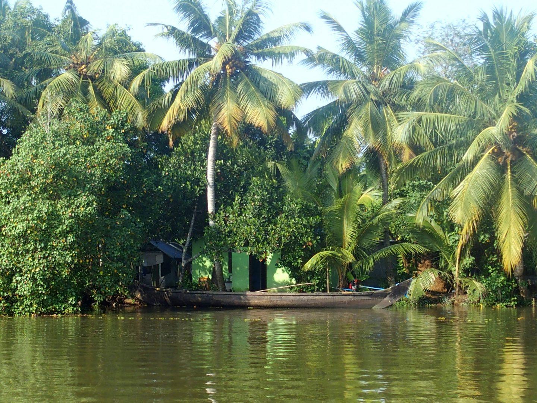 Maison dans végétatation backwaters Allepey Kerala Inde