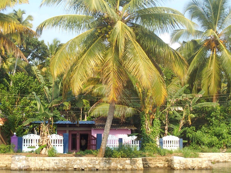 Maison en bord de backwater Allepey Kerala Inde