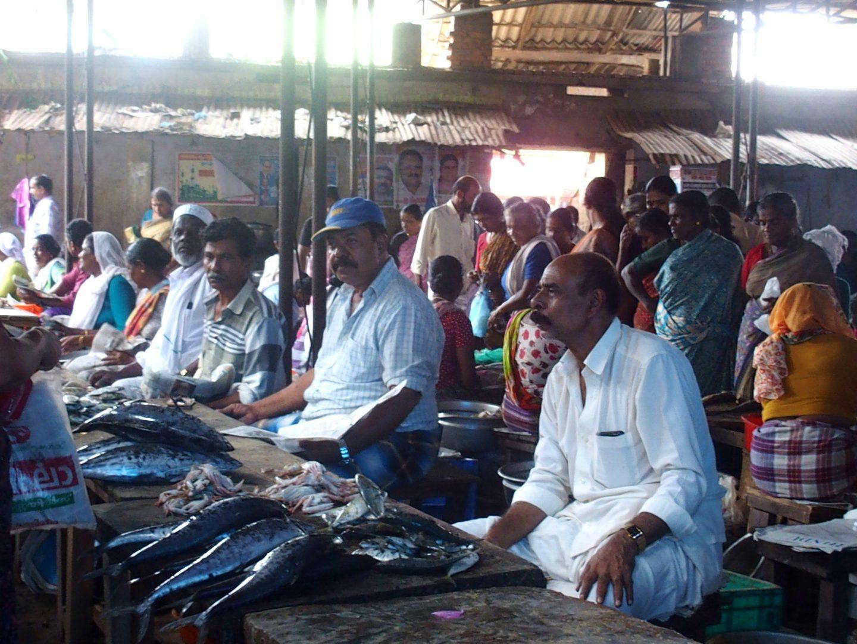 Marché aux poissons Vishram Kerala Inde