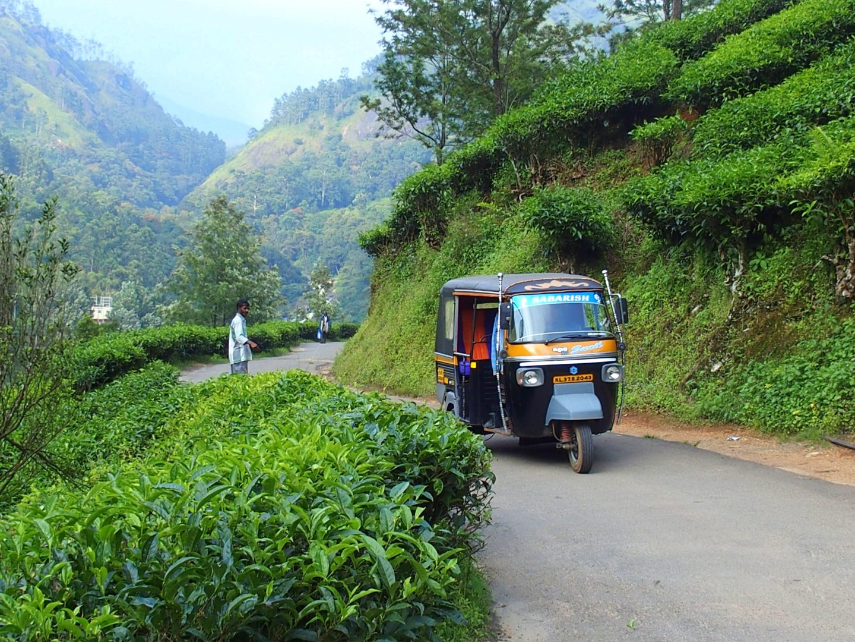 Mon rickshaw à Munnar Kerala Inde