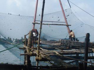 Premiers pas en Inde du sud dans le Kérala à Cochin