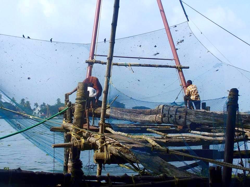 Remontée filet chinois pêche Cochin Kerala Inde