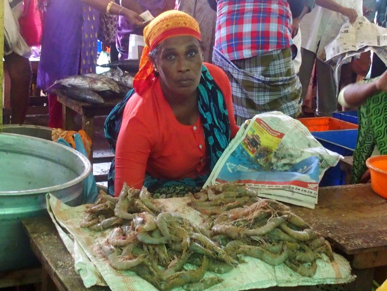 Vendeuse crevettes marché Vishram Kerala Inde