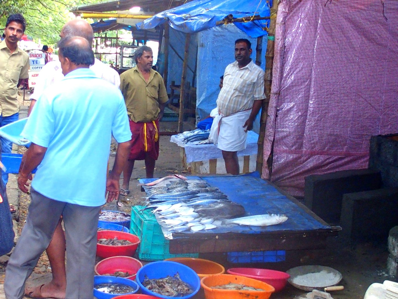 Vente poissons Cochin Kerala Inde