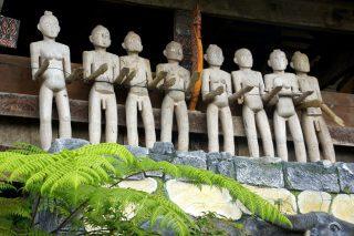 Voyage en terre authentique dans le pays Toraja à Sulawesi