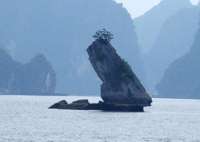 Ilôt Baie d'Halong Vietnam