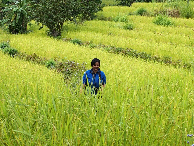 Randonnée champêtre avec Karishma Kalimpong Inde