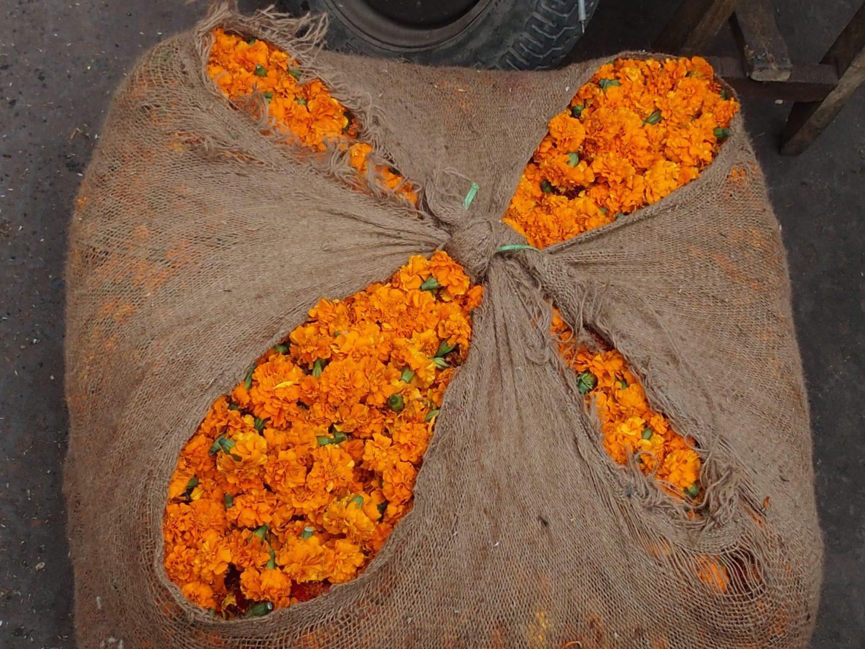 Sac de marygold marché Kalimpong Inde