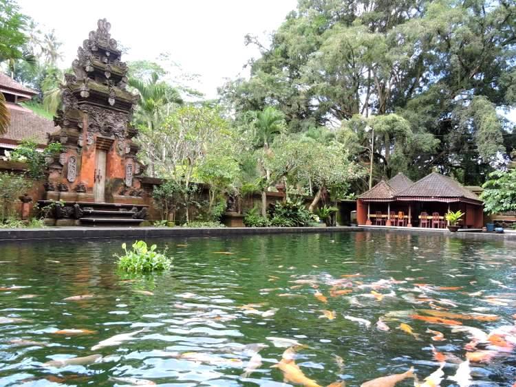 Bassin de carpes Koï Tirta Empul Bali