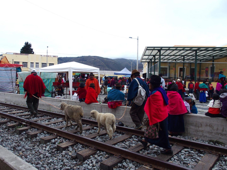Vendeurs de moutons gare de Guamote Equateur