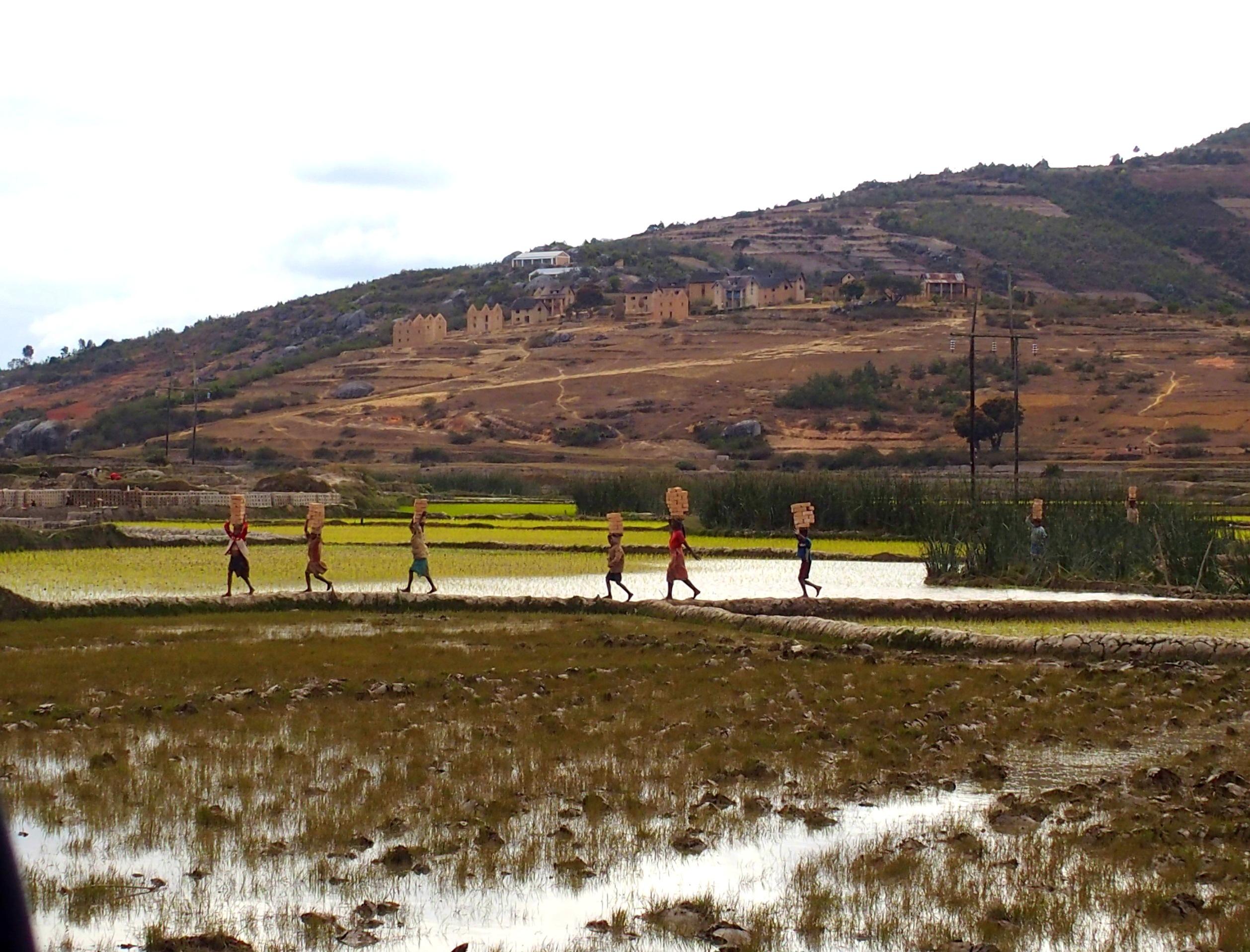 Défilé d'enfants sur chantier briques Madagascar