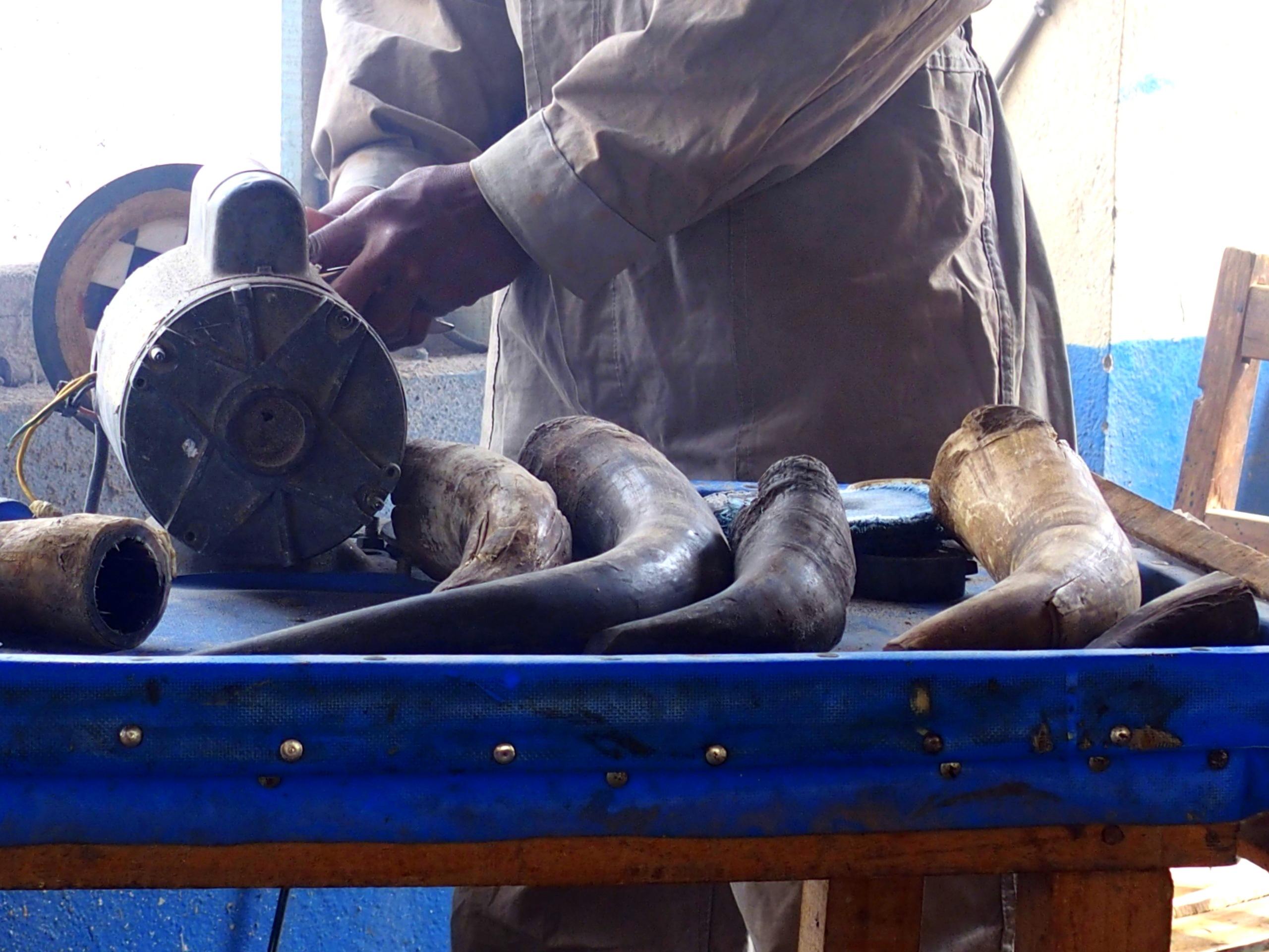 Travail artisanal sur cornes de buffles Madagascar.