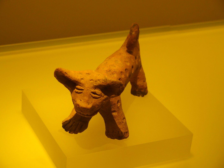 Chien terre cuite Musée de l'Or Bogota Colombie
