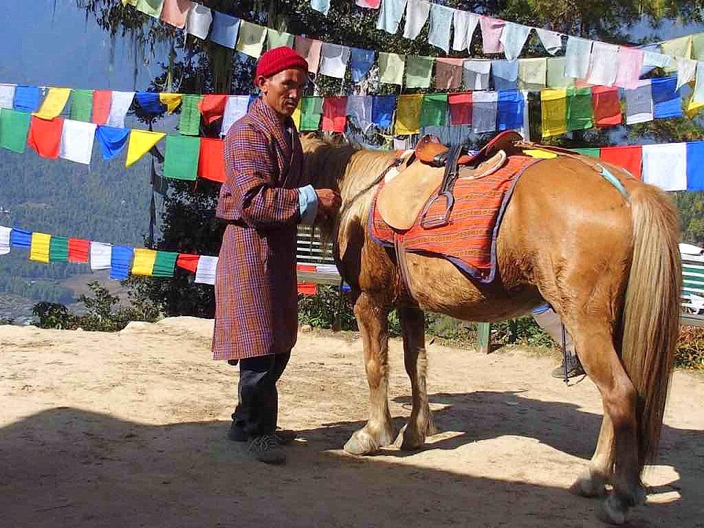 Balade à cheval au Tiger nest au Bhoutan