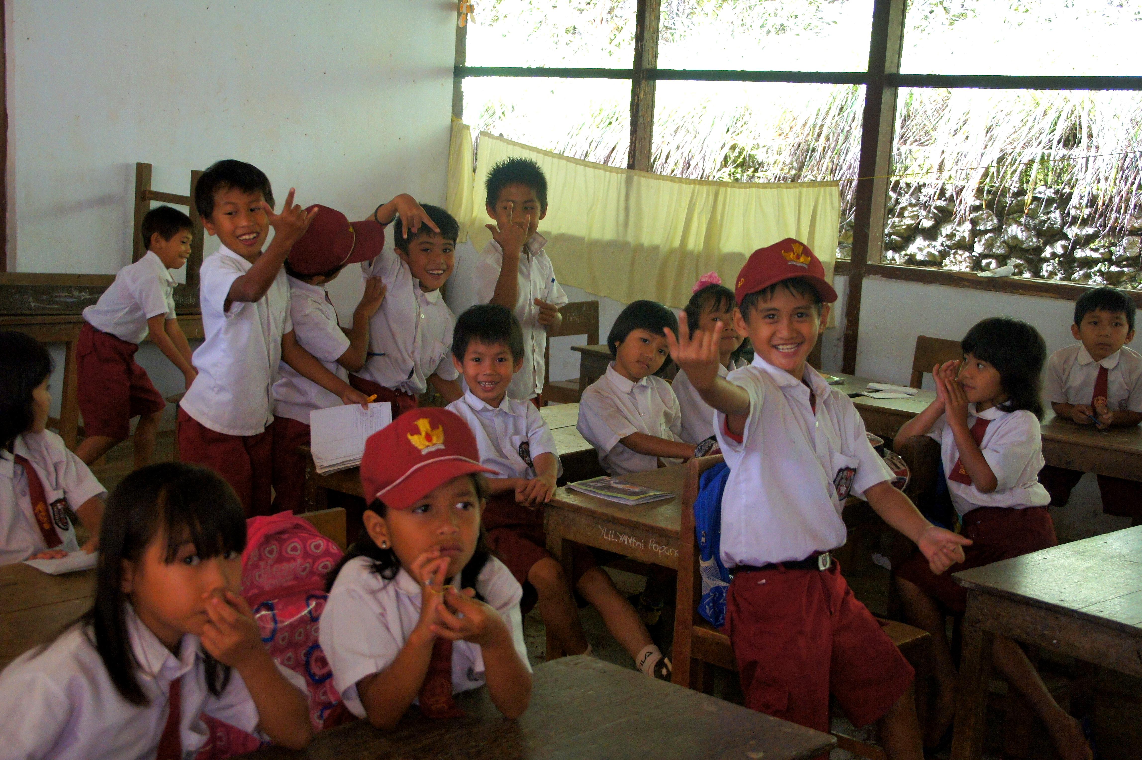 Visite animée d'une classe Sulawesi
