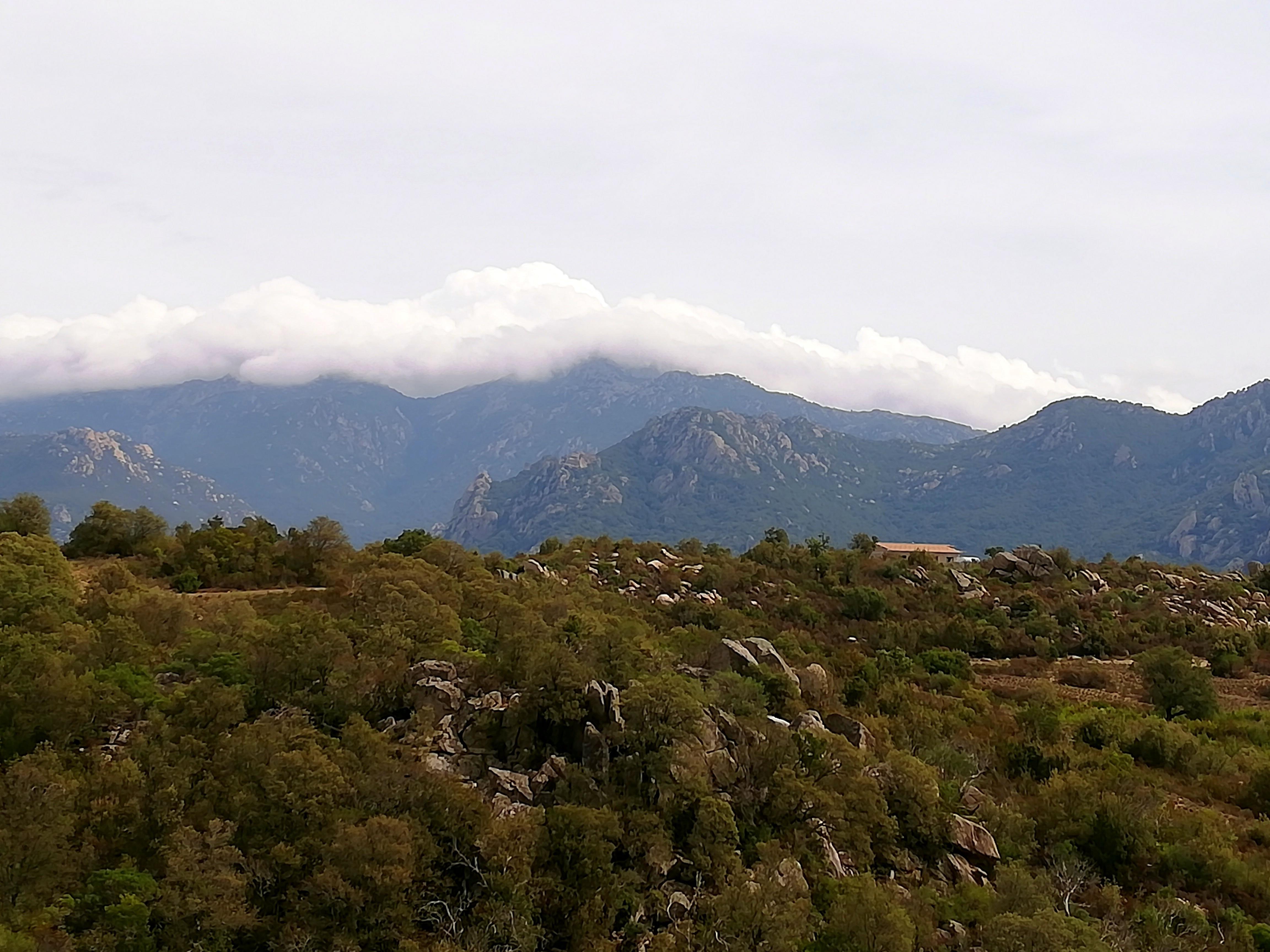 Chambres d'hôtes à la campagne Route des sens Corse