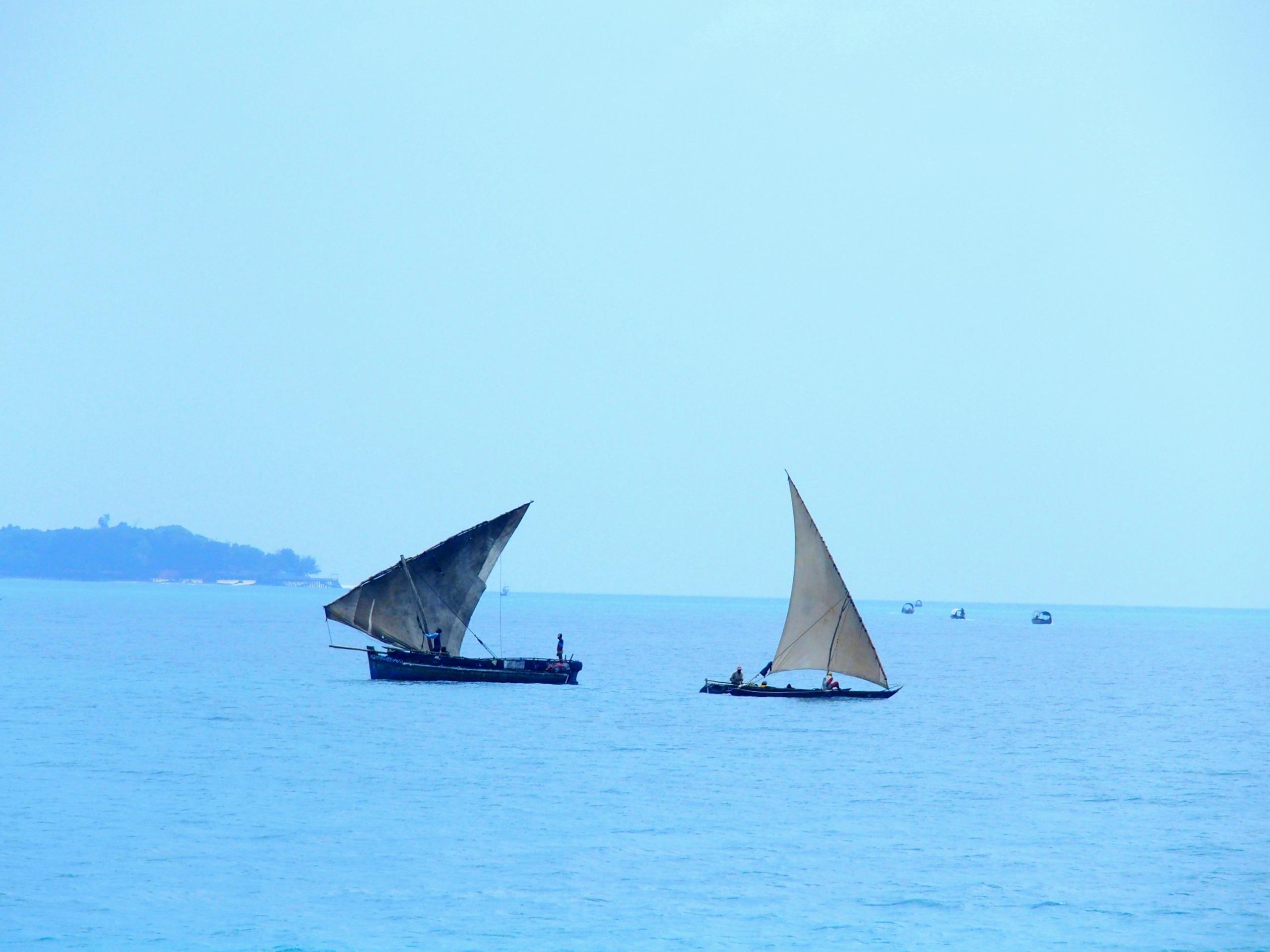Dhow, bateaux traditionnels en mer Zanzibar.
