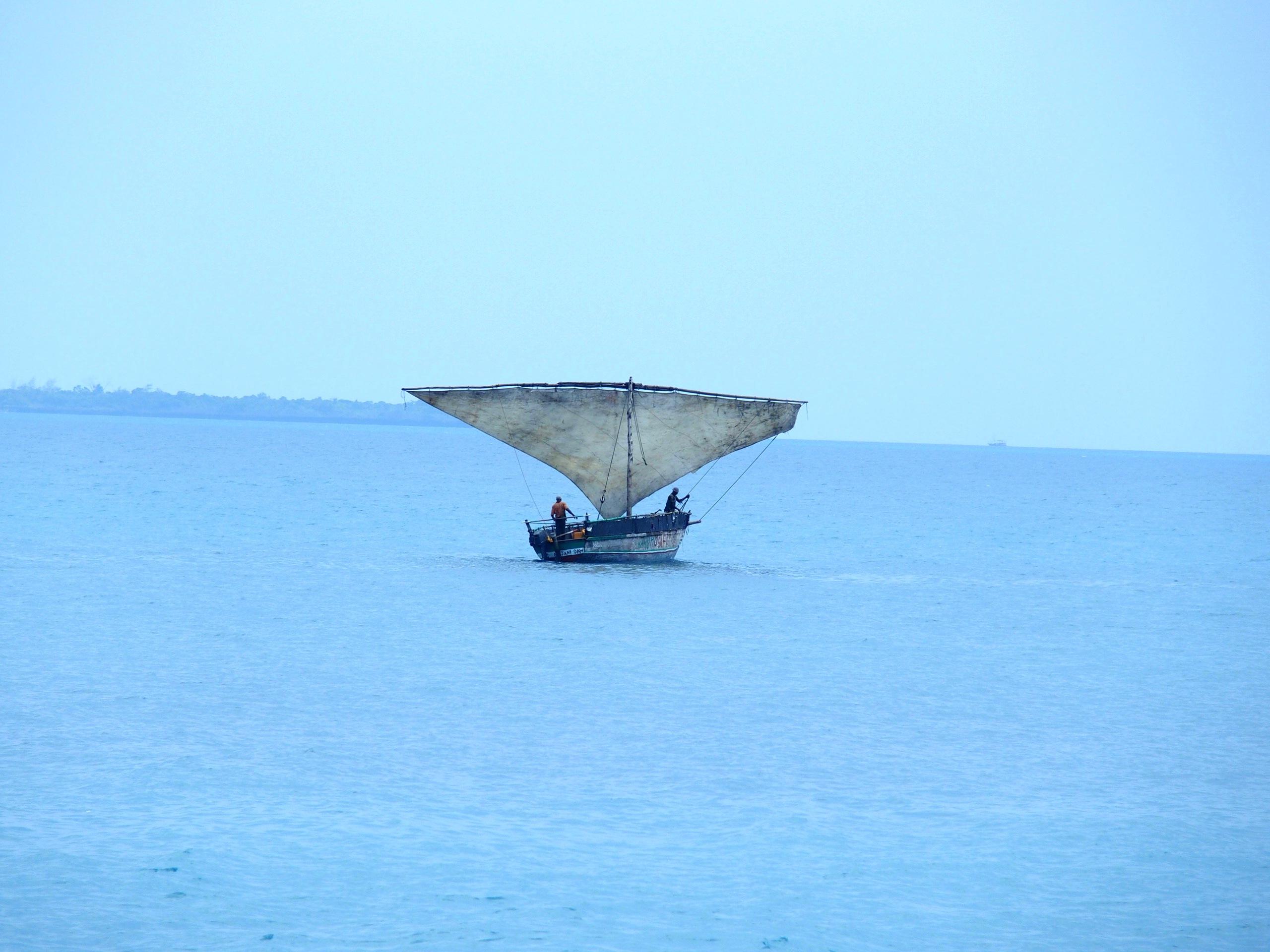 Dhow en pêche Zanzibar