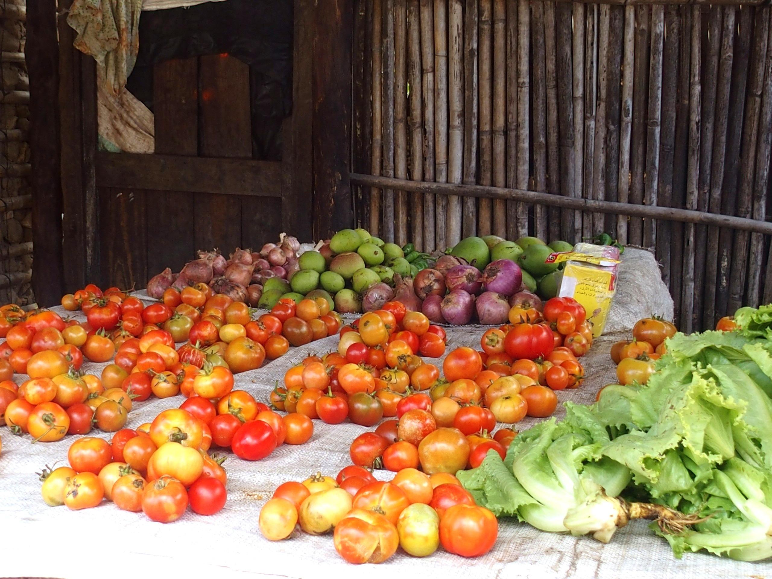 Etal de marché Pemba Mozambique