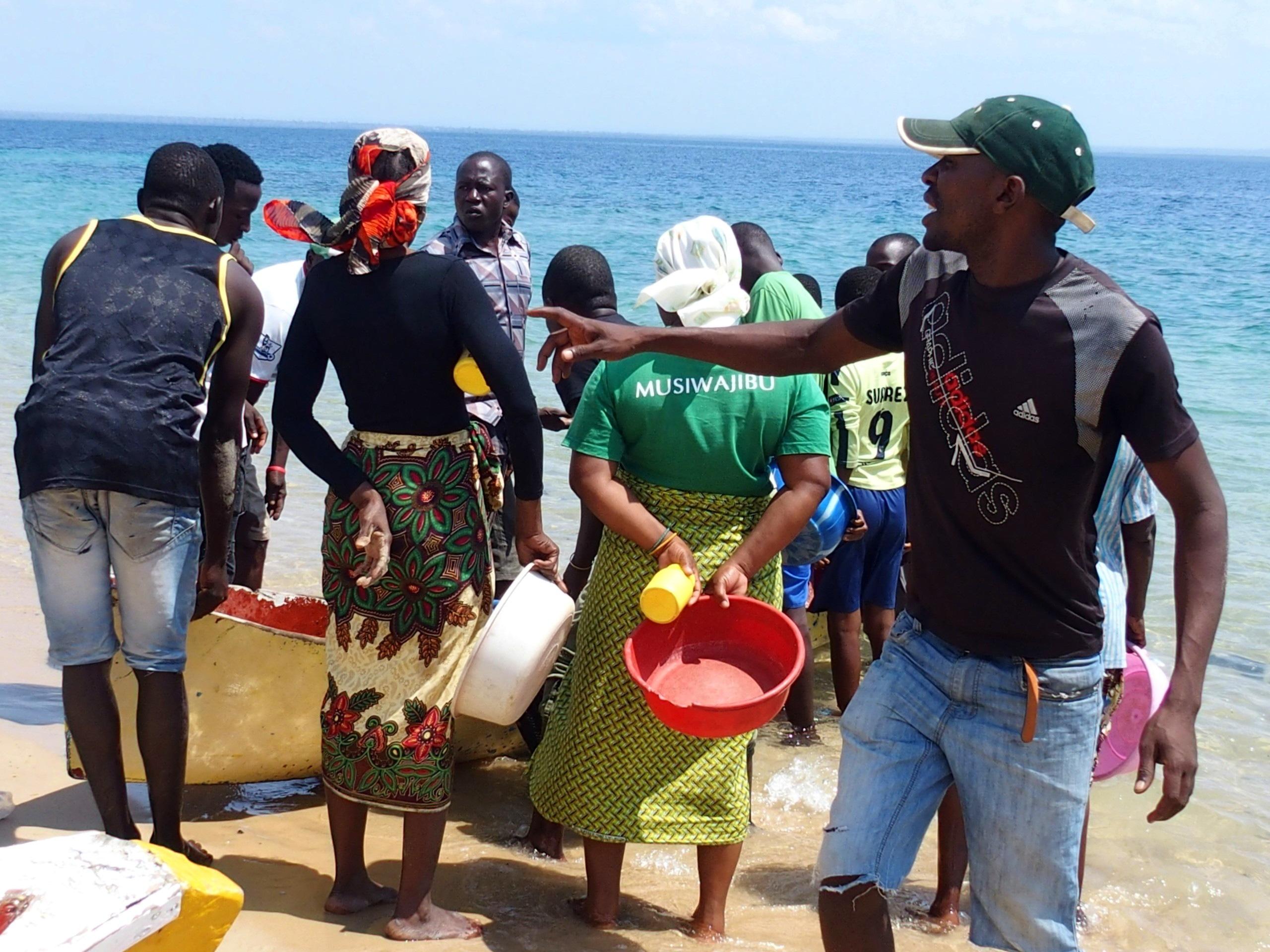 Vente du poisson sur plage Pemba Mozambique