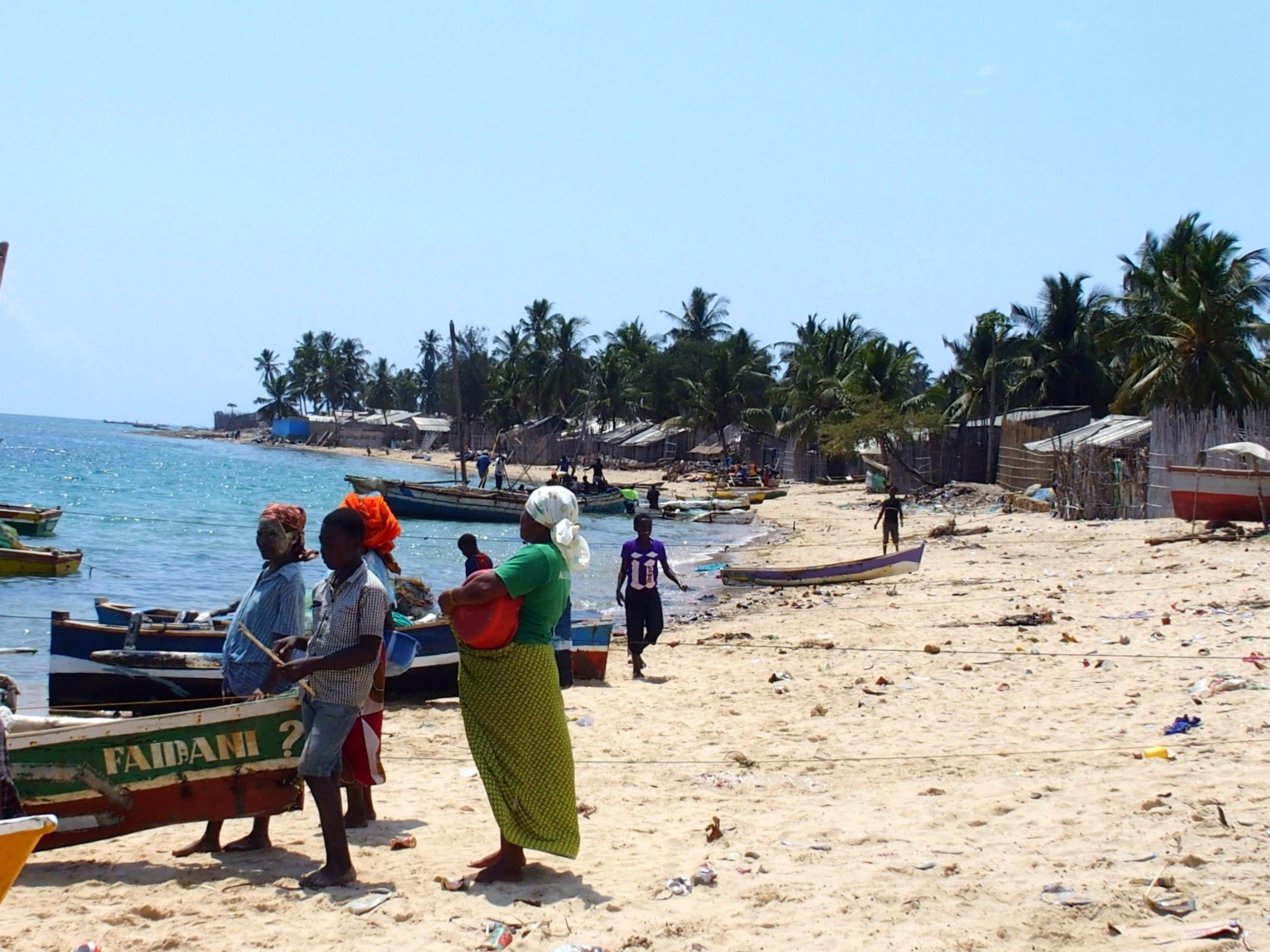 Villageois qui viennent chercher le poisson plage Pemba Mozambique