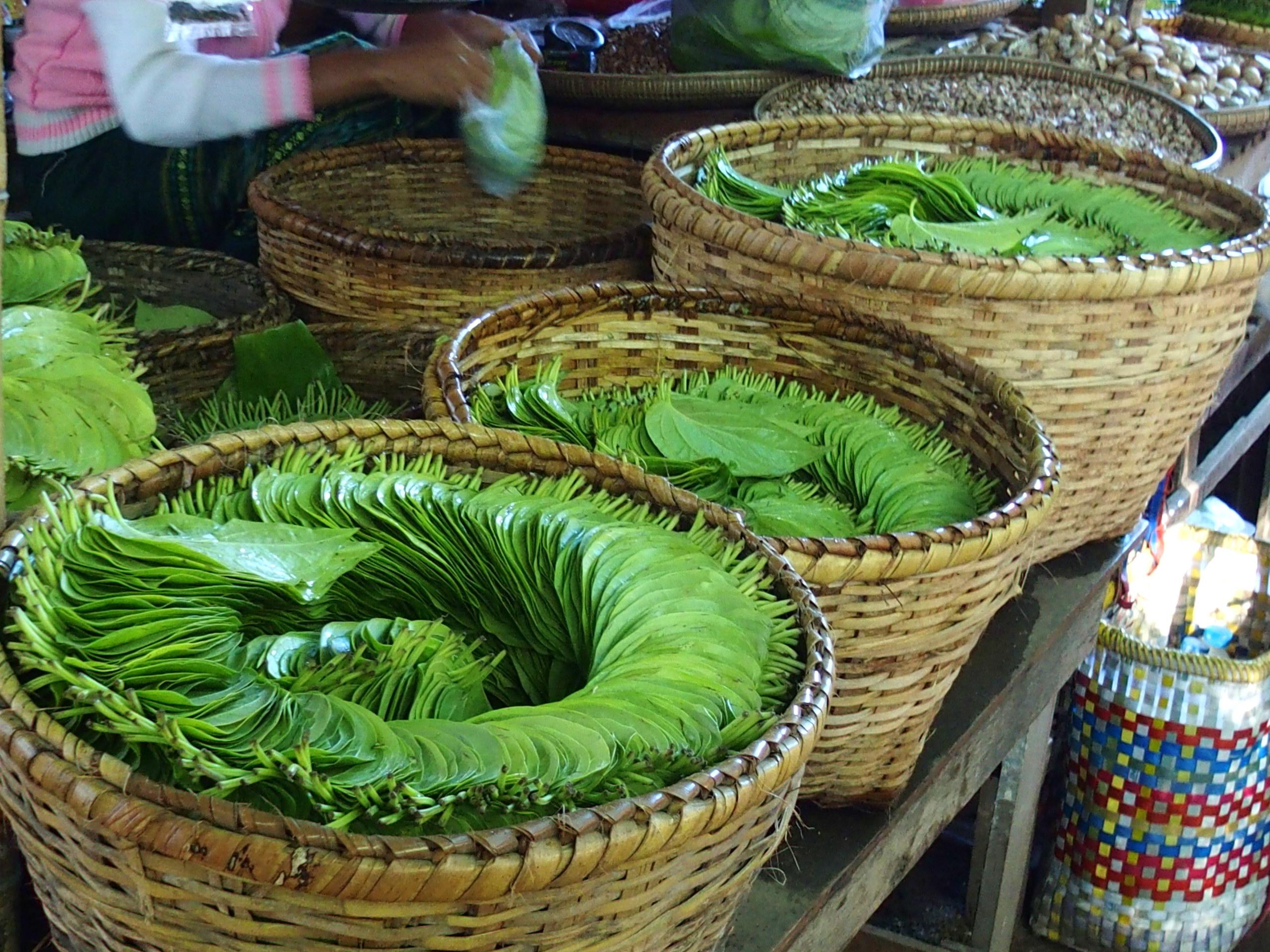Feuilles de bétel marché Bagan Myanmar.