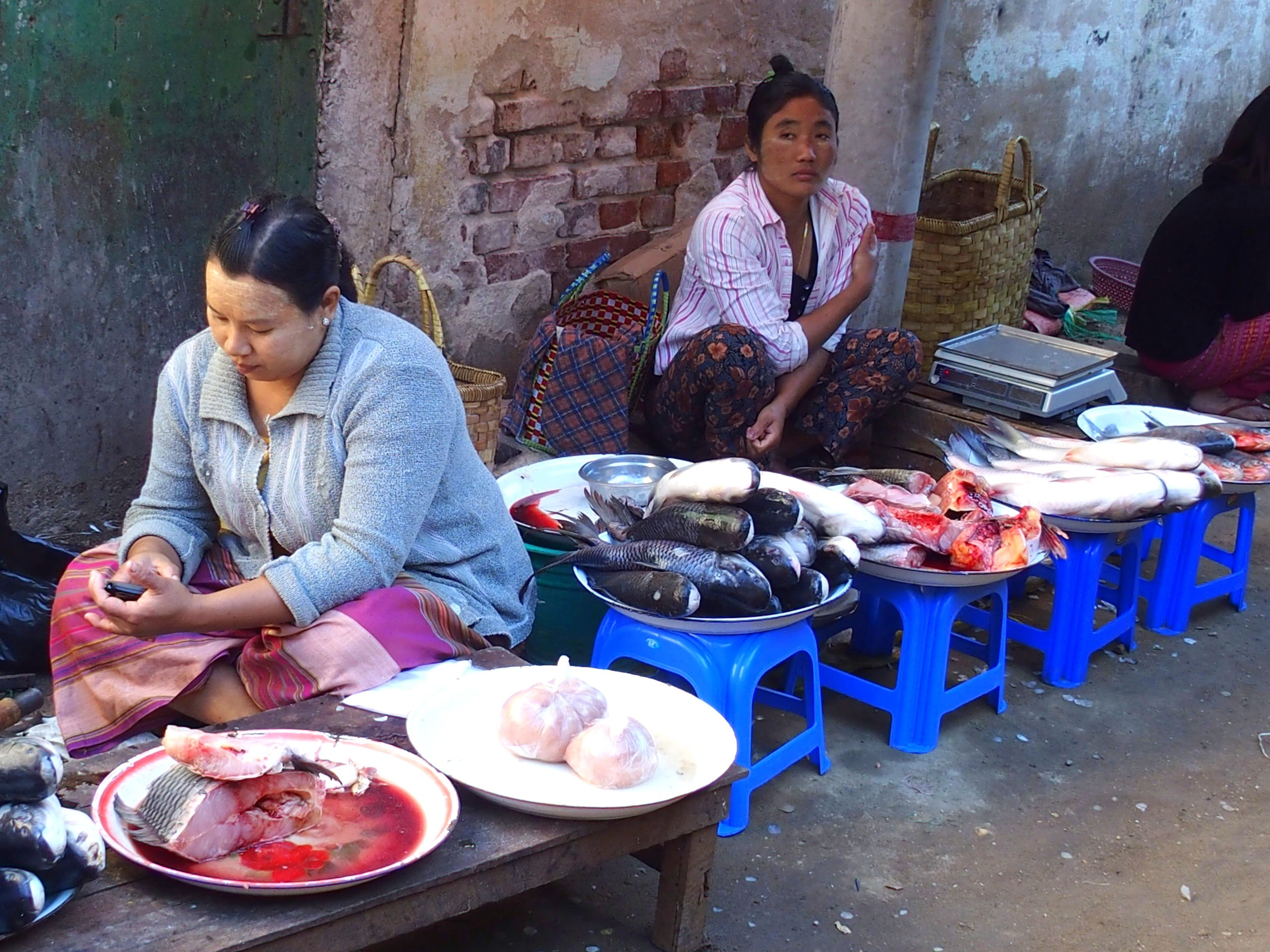 Vendeuses-poissons-marché-Bagan-Myanmar