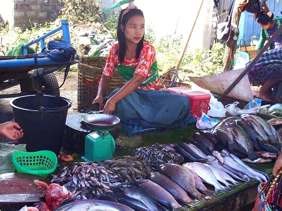Vendeuse poissons marché Bago Myanmar