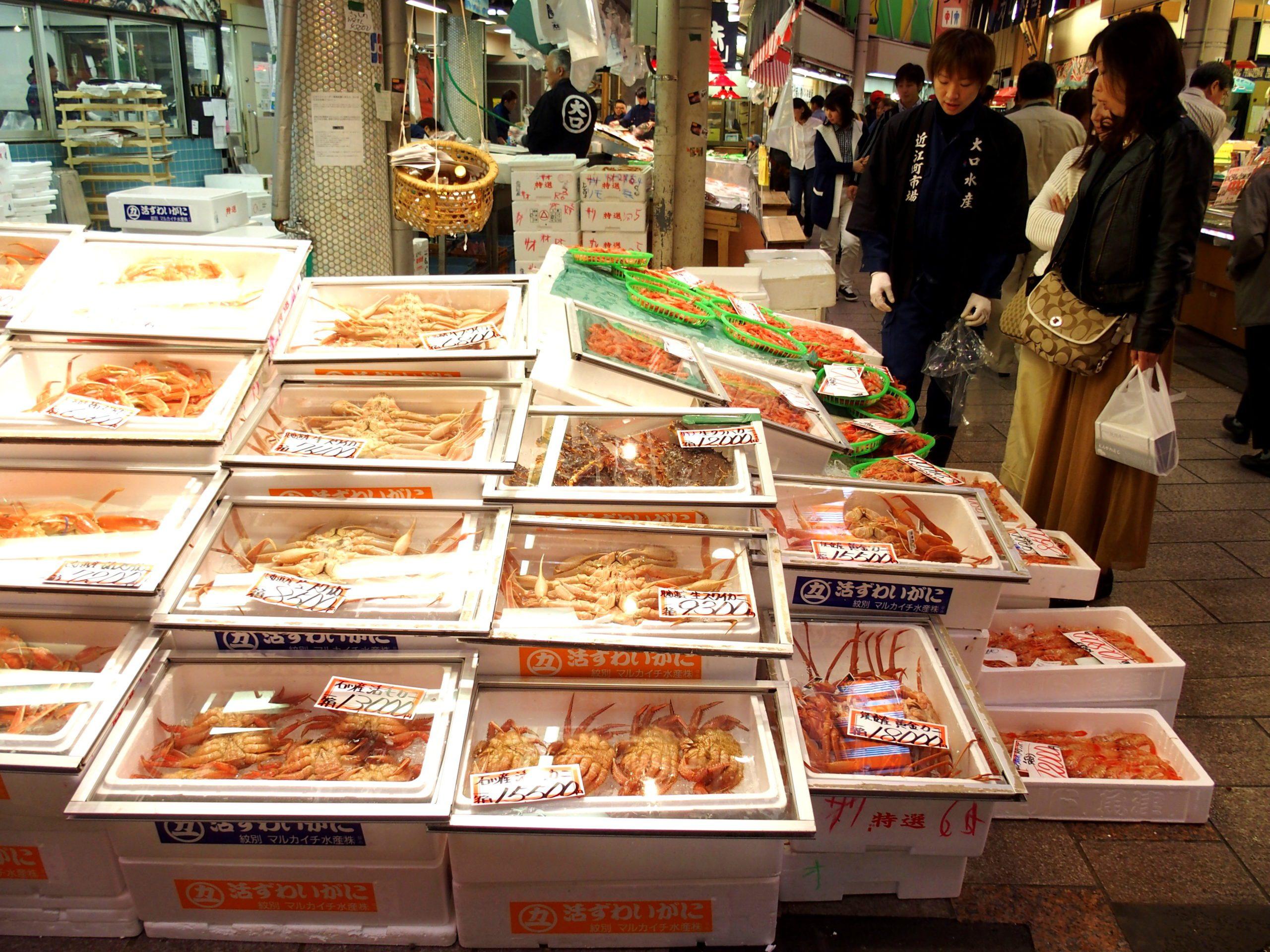 Etal crabes et fruits de mer maché Omicho Kanazawa Japon