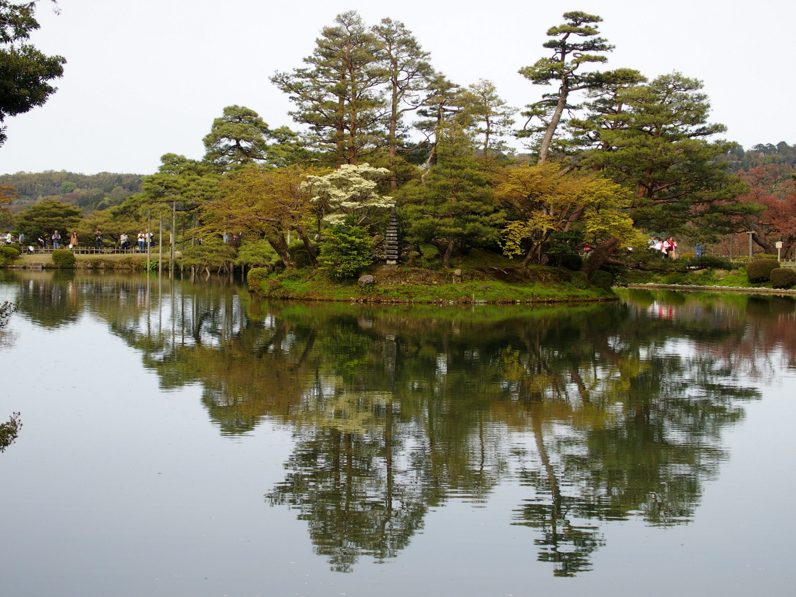 Ilot de verdure dans jardin Kenruoken Kanazawa Japon