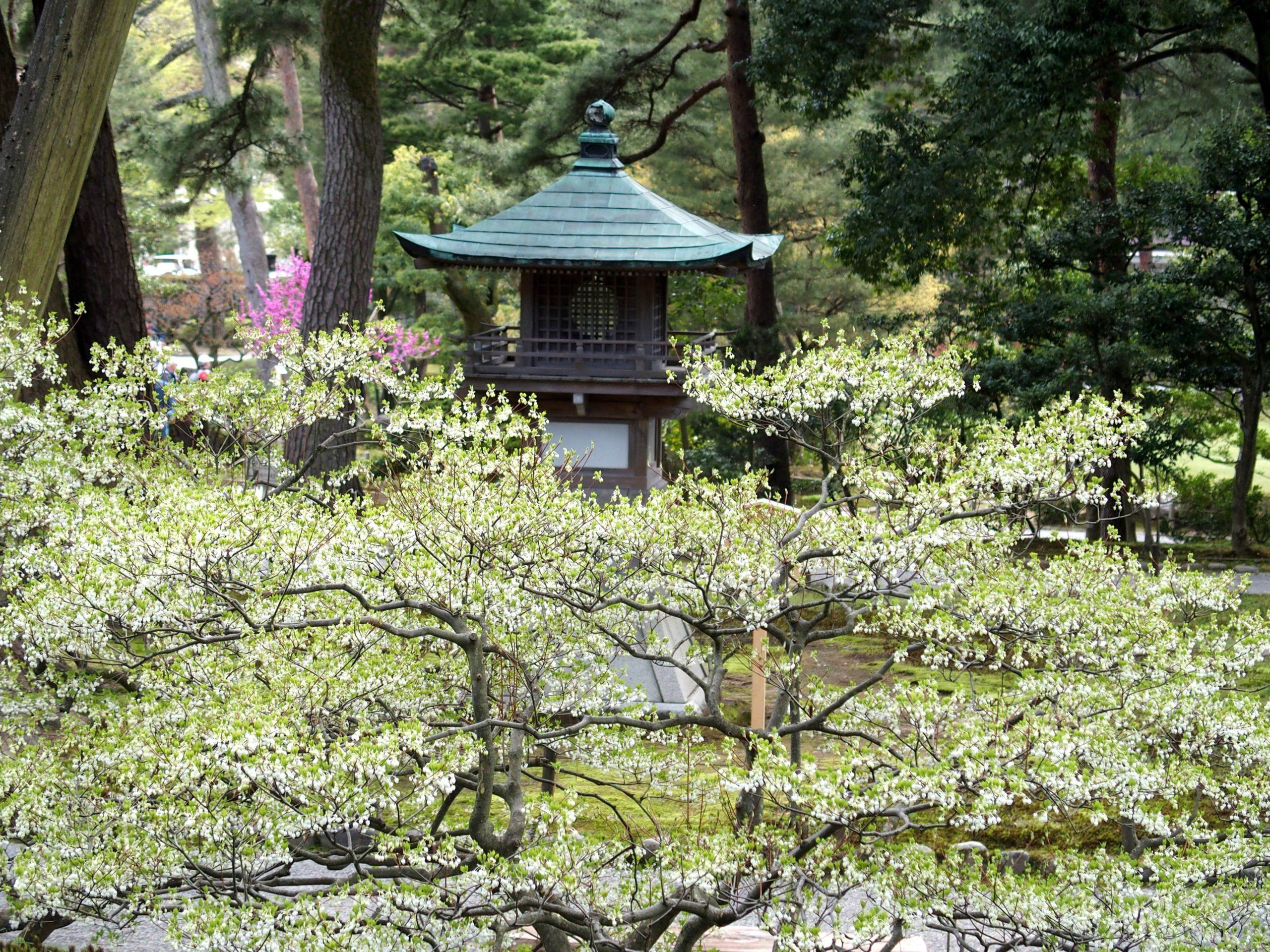 Lanterne dans jardin Koruken-en visite de Kanazawa