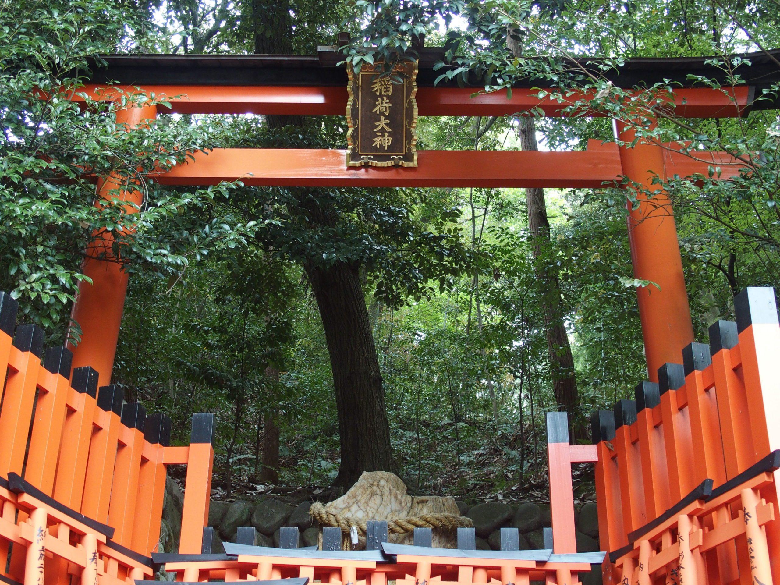 Torii du sanctuaire Fushimi Inari-taisha dans les bois Kyoto