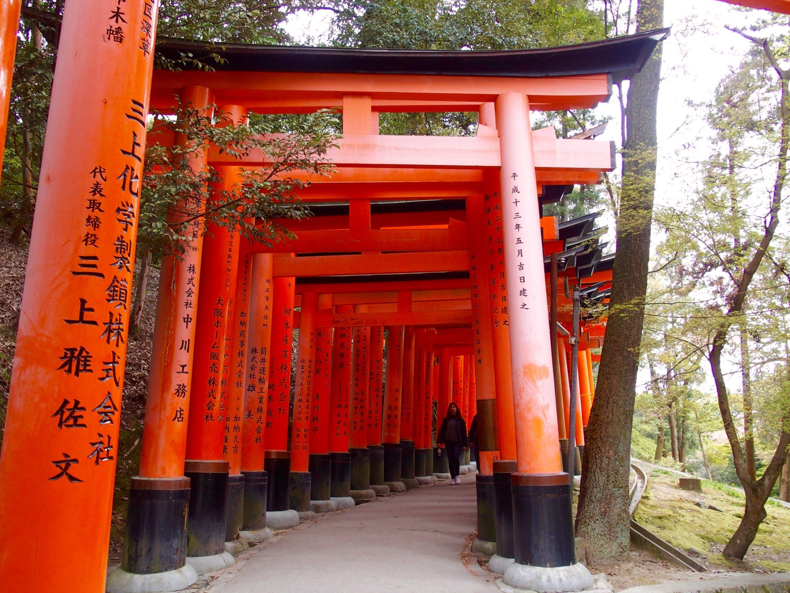 Torii sanctuaire Fushimi Inari-taisha Kyoto.