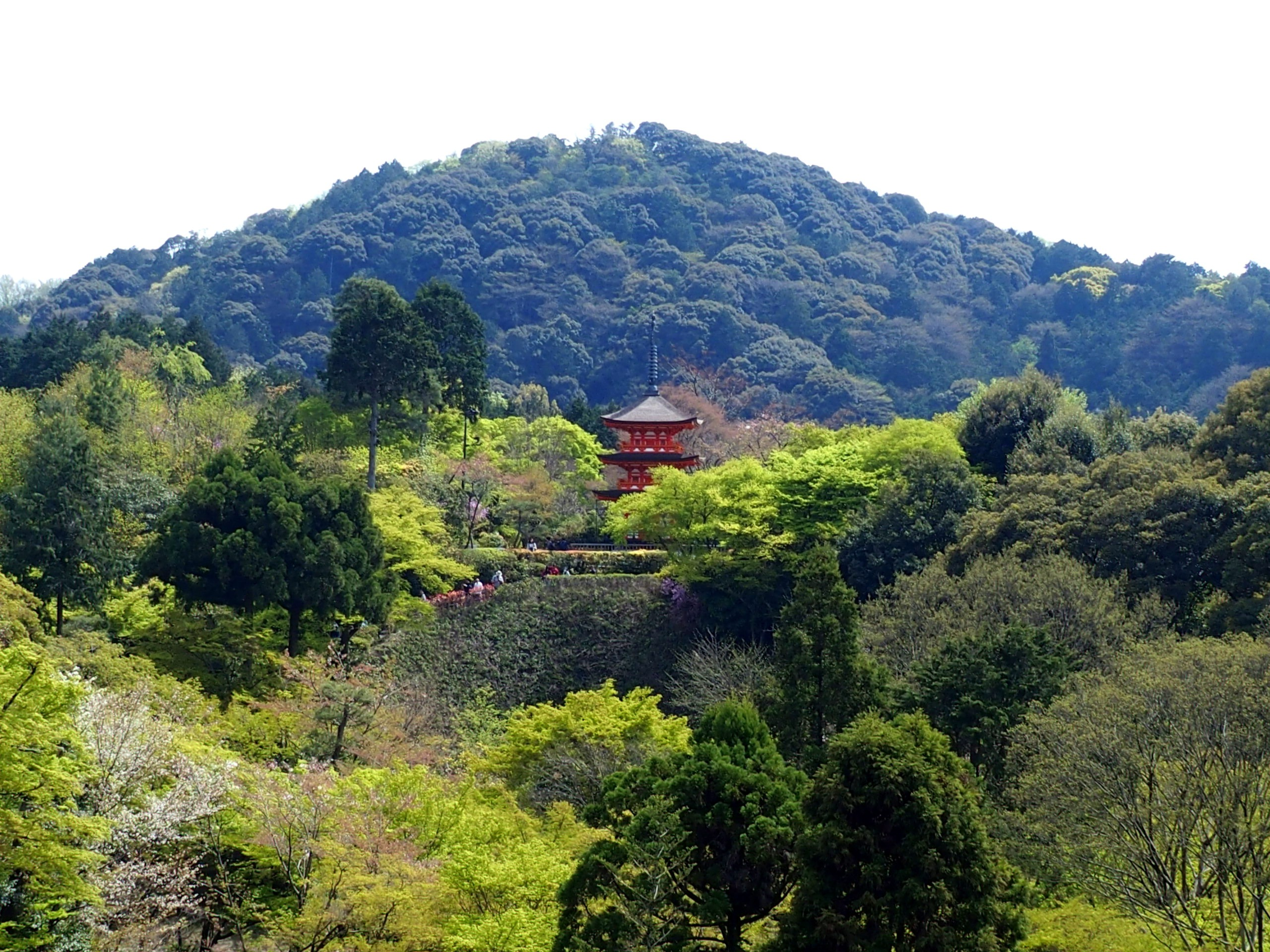 Vue depuis la plateforme du temple Kiyomizu-Dera